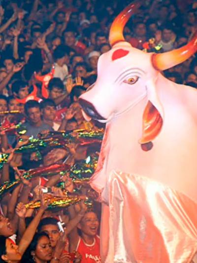 Festival de Parintins / Festa do Boi-Bumbá