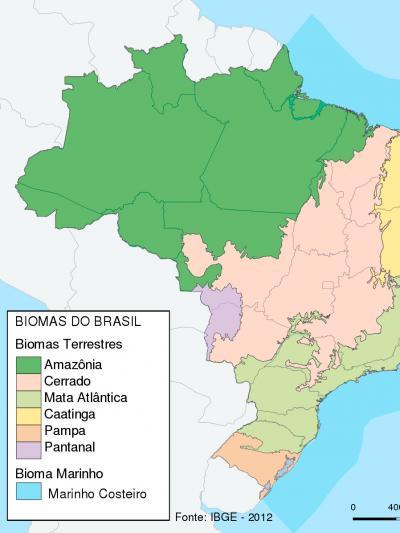Os biomas do Brasil